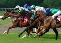 sports-horse-race-small
